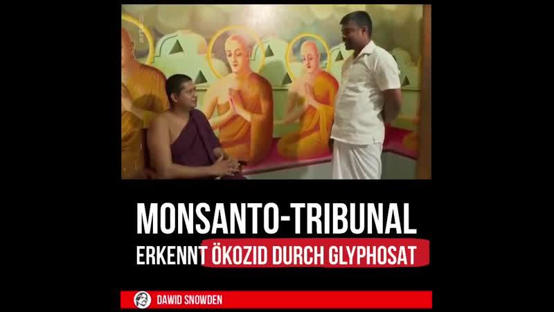 225 - Monsanto Tribunal ~ Erkennt ÖkozidGenozid durch Glyphosat