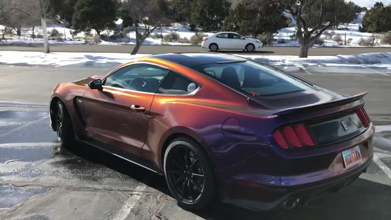 Shelby GT350 wrapped in Avery Gloss Roaring Thunder