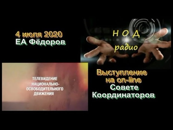 04,07,2020 ЕА Фёдоров на Совете Координаторов