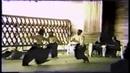 Aikido Video - Randori - Multiple Attackers - Mitsugi Saotome Shihan