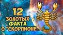 Скорпион 12 САМЫХ МОЩНЫХ ЗОЛОТЫХ ФАКТА Знака Зодиака