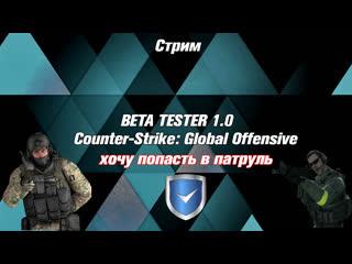 Стрим  Погнали играть CS:GO  хочу попасть в патруль