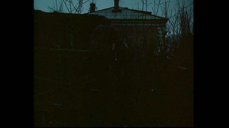 В лесах под Ковелем 1984 часть 2