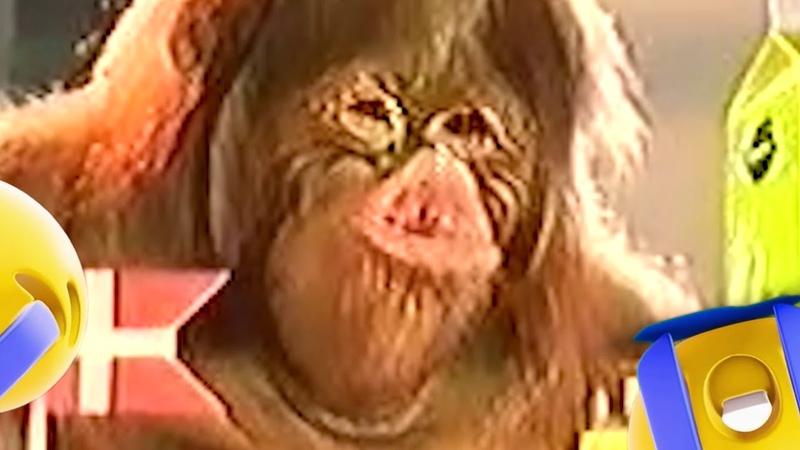 Rynke the monkey lips crazy bj lips