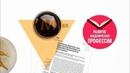 ResearcherID: как добавить публикации | Thomson Reuters | Лекториум