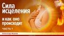 Сила исцеления и как оно происходит Александр Жарков Часть 1