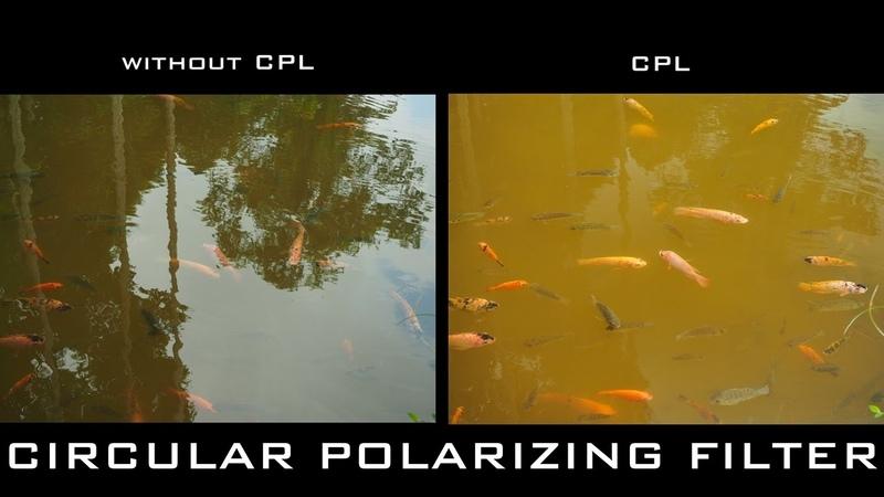 Use Of Circular Polarizing Filter CPL