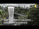 Inside Singapore's Jewel Changi Airport