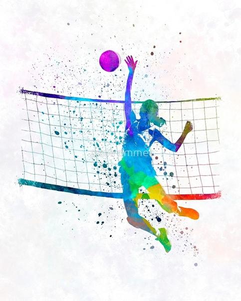 Картинки на белом фоне волейбол