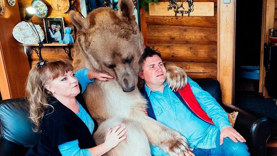 Неплюшевый Мишка. Как складывается судьба супругов Пантелеенко, которые 28 лет живут с медведем в одном доме