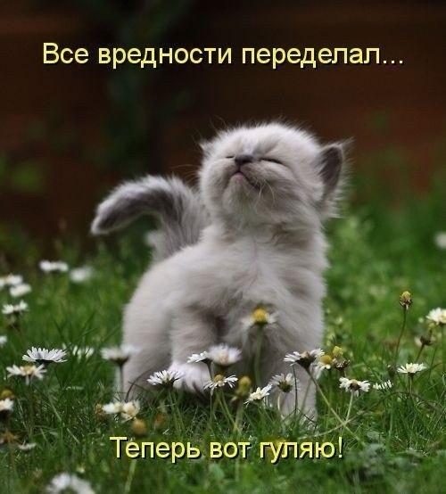 фото из альбома Андрея Касминко №13