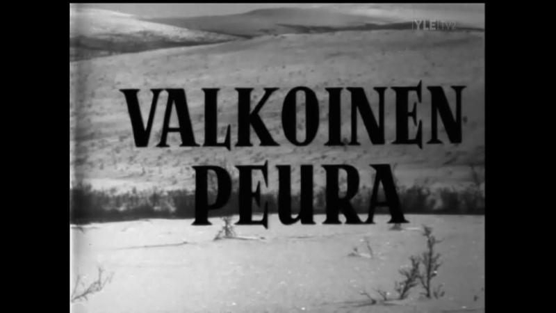 Erik Blomberg Valkoinen peura 1952