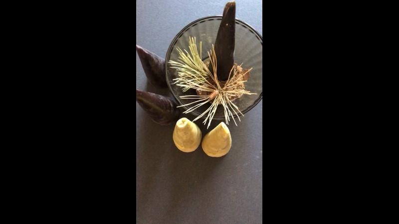Видео от Лиды Бердичевской