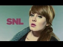 Adele - Chasing Pavements Live on Saturday Night Live / SNL 2008