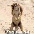 Личный фотоальбом Виталия Десяткова