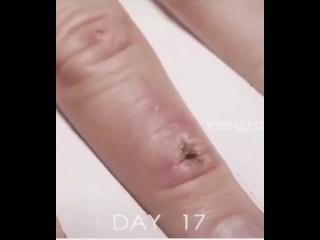 Видео от brows_bytanya