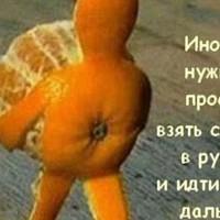 СветланаКомпаний