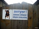 Чэчэк Гарифуллина, 33 года, Казань, Россия