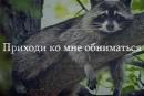 Кондратьева Людмила | Ижевск | 9