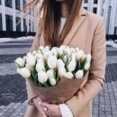 Персональный фотоальбом Polina Zhecheva