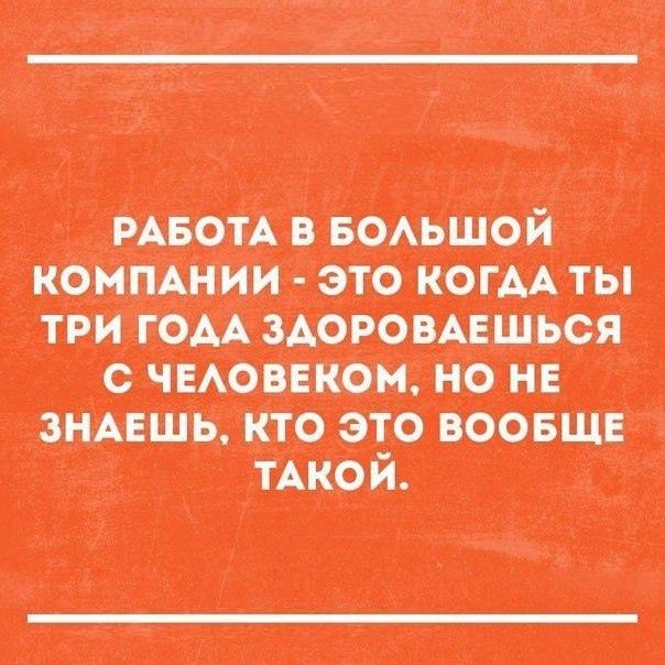 фото из альбома Никиты Заврачева №6