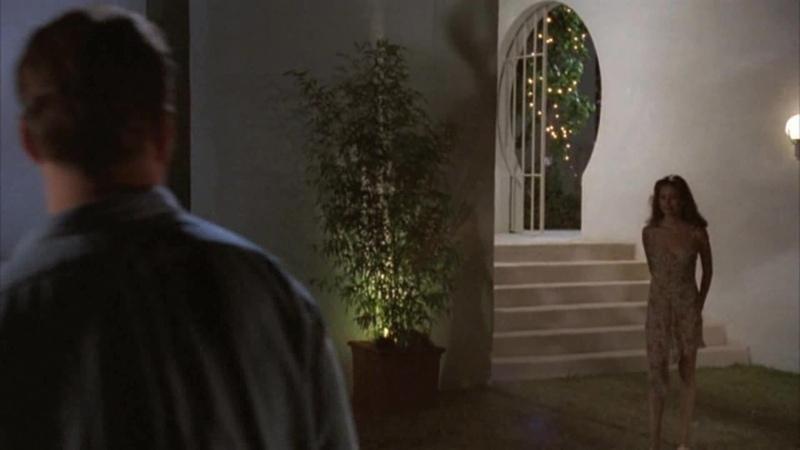 ЦВЕТ НОЧИ 1994 18 триллер детектив мелодрама Ричард Раш 1080p