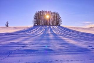 Андрей Сычёв фотография #24