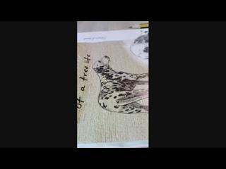 Алина Макарова - Live