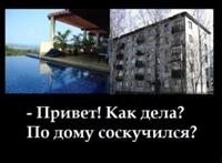 Vitaliy Bashevas фото №25