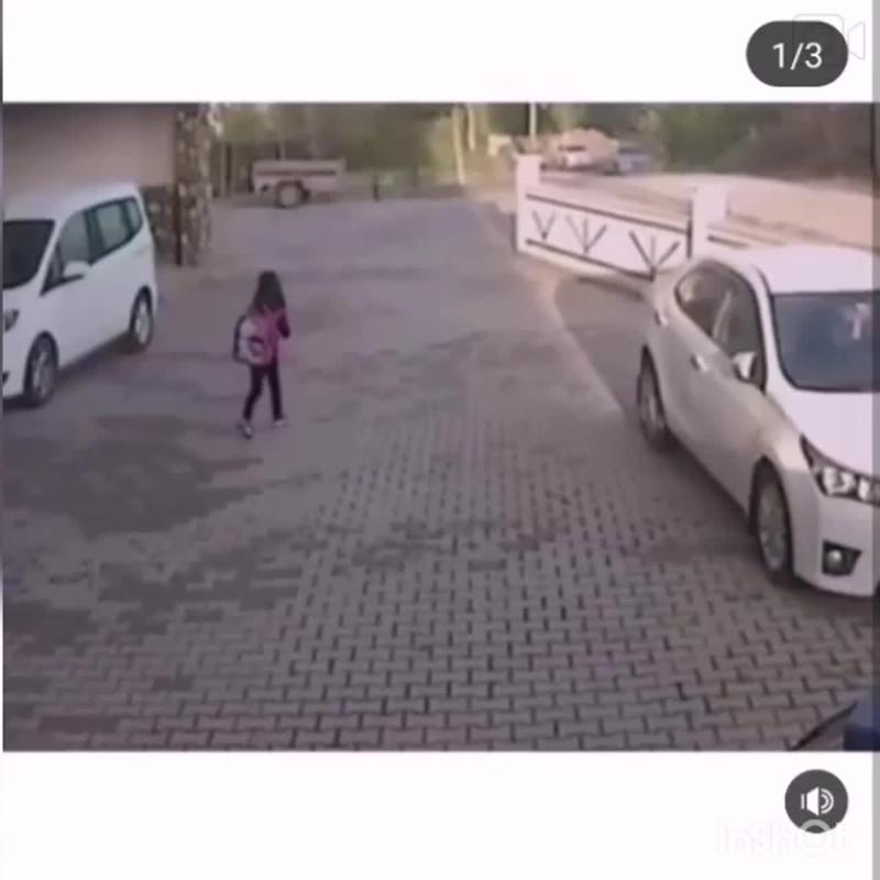 Две собаки напали на ребёнка