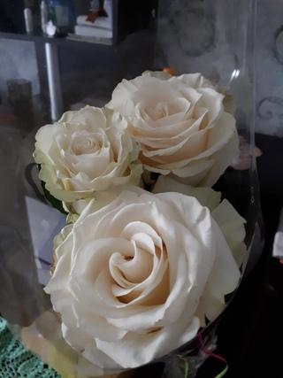 Люблю розы
