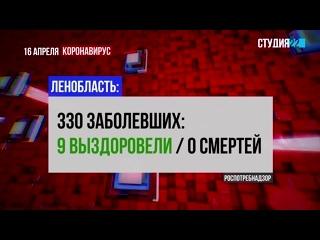 Коронавирус: информация по Бокситогорскому району на 16 апреля