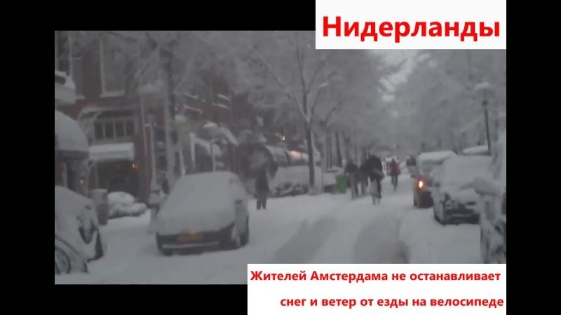 Жителей Амстердама не останавливает снег и ветер от езды на велосипеде, Нидерланды
