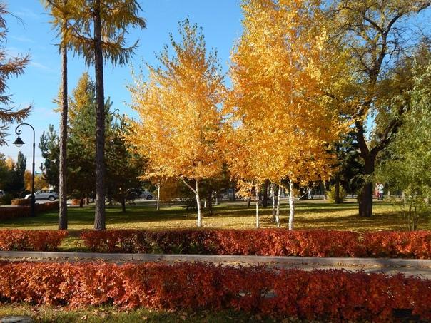 Осень, в которую нельзя не влюбиться 😍📸 [id32598400 Лада ...