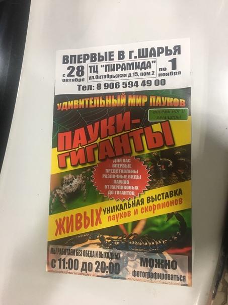 Впервые в городе Шарья. С 28 октября по 1 ноября в...
