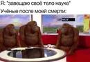Ушаков Александр |  | 32