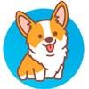 HiDogs.ru - породы собак и их особенности
