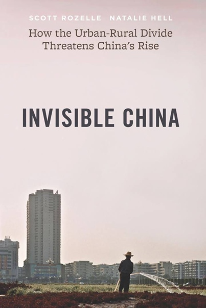 Invisible China How the Urban-Rural Divide Threatens China's Rise by Scott Rozelle Natalie Hell