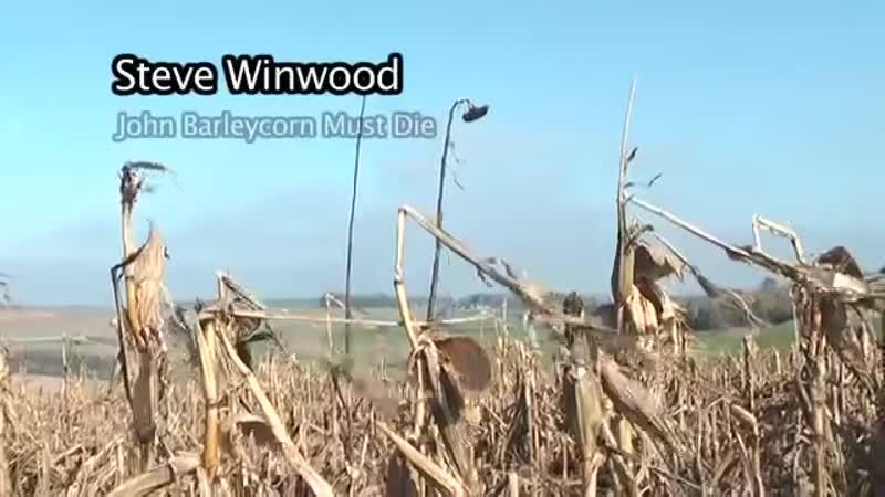 Steve Winwood Traffic John Barleycorn Must Die