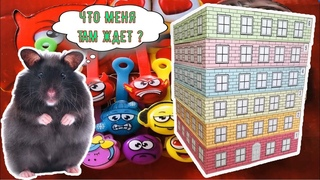 Дом - лабиринт для хомяка (испытание скрепыши) / House - maze for hamster (test of the scrapers)