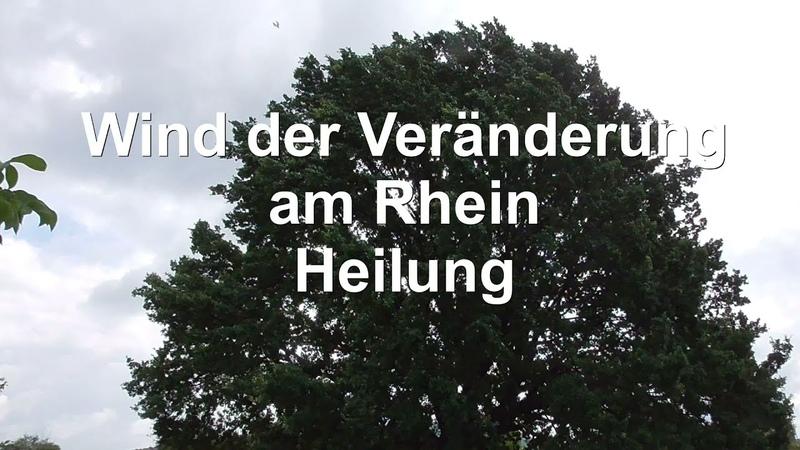 Wind der Veränderung am Rhein Heilung Teil 3