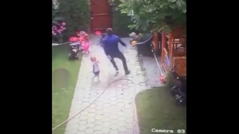 Бедная собачка Сумасшедший папочка ее напугал