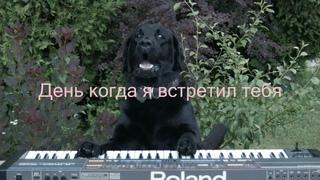 Олег Чубыкин - День когда я встретил тебя